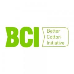 良好棉花发展标准 BCI